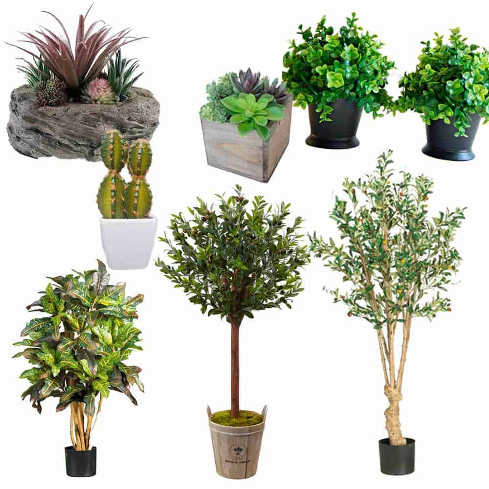 affordable and oh-so-real-looking artificial green plants