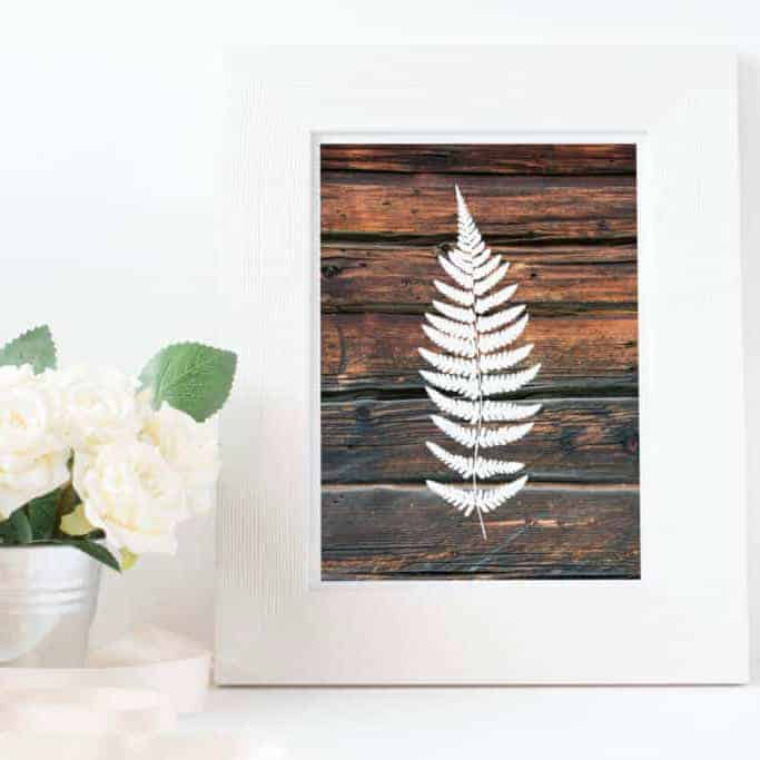 Wooden Fern Art Print by Petrichor Blue